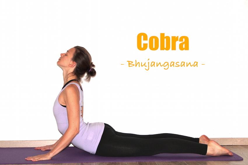 How To Do Cobra Pose Yoga Poses Step By Step Explained